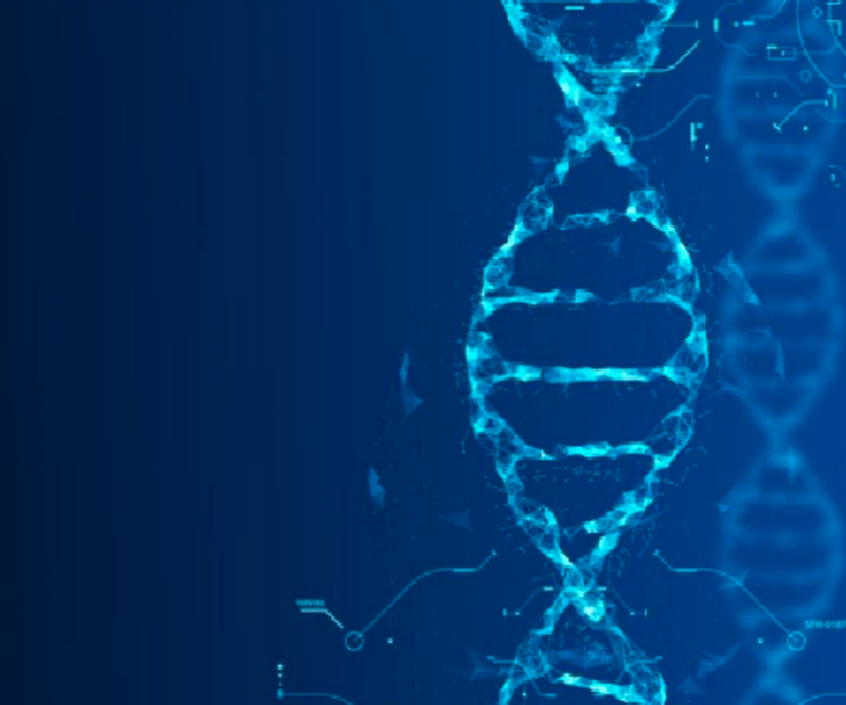 The DNA of a Sale Event